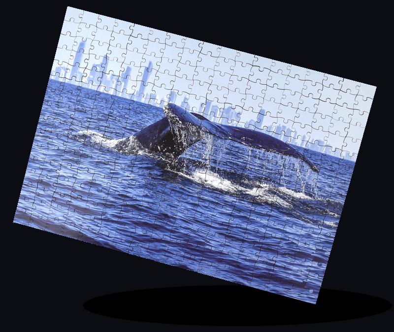 Whale-c